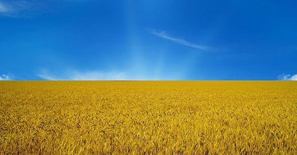 C Днем Независимости Украины!