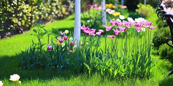 Праздник весны и цветов в комплексе «Софиевский Посад»!